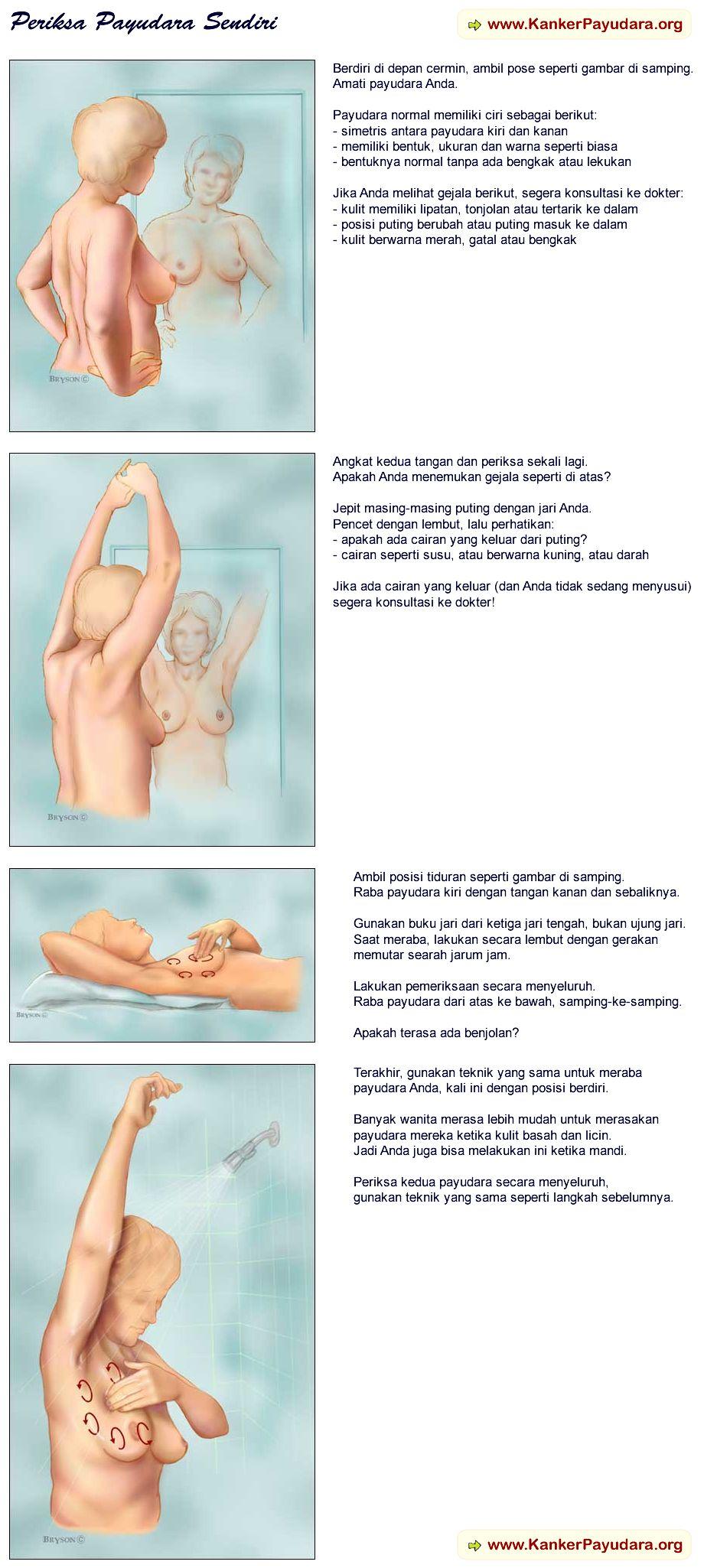 Pemeriksaan payudara sendiri